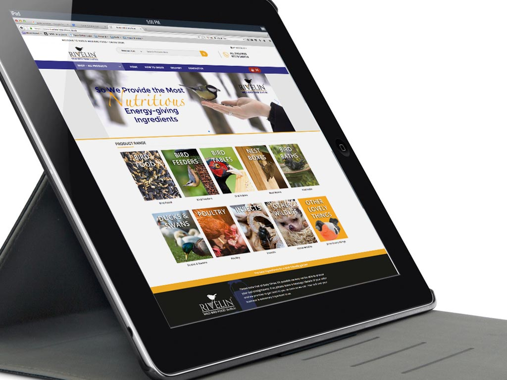Website, design, build, branding, graphic design, e-commerce website