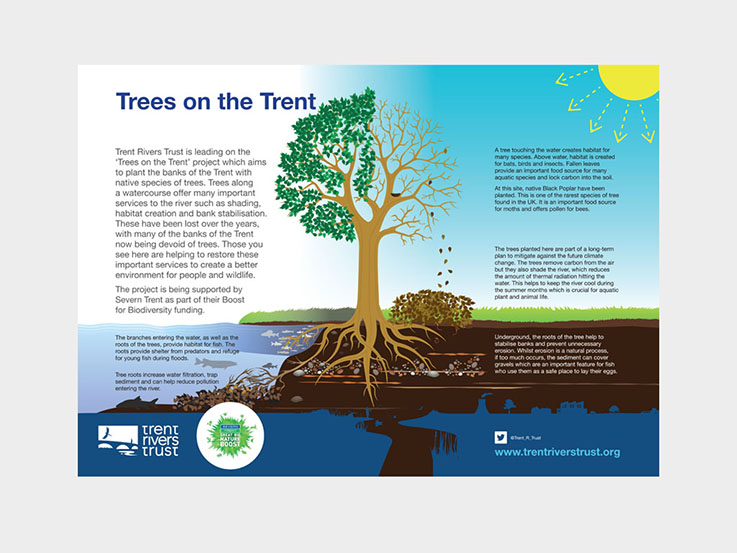 Trees on the trent infographic infographics