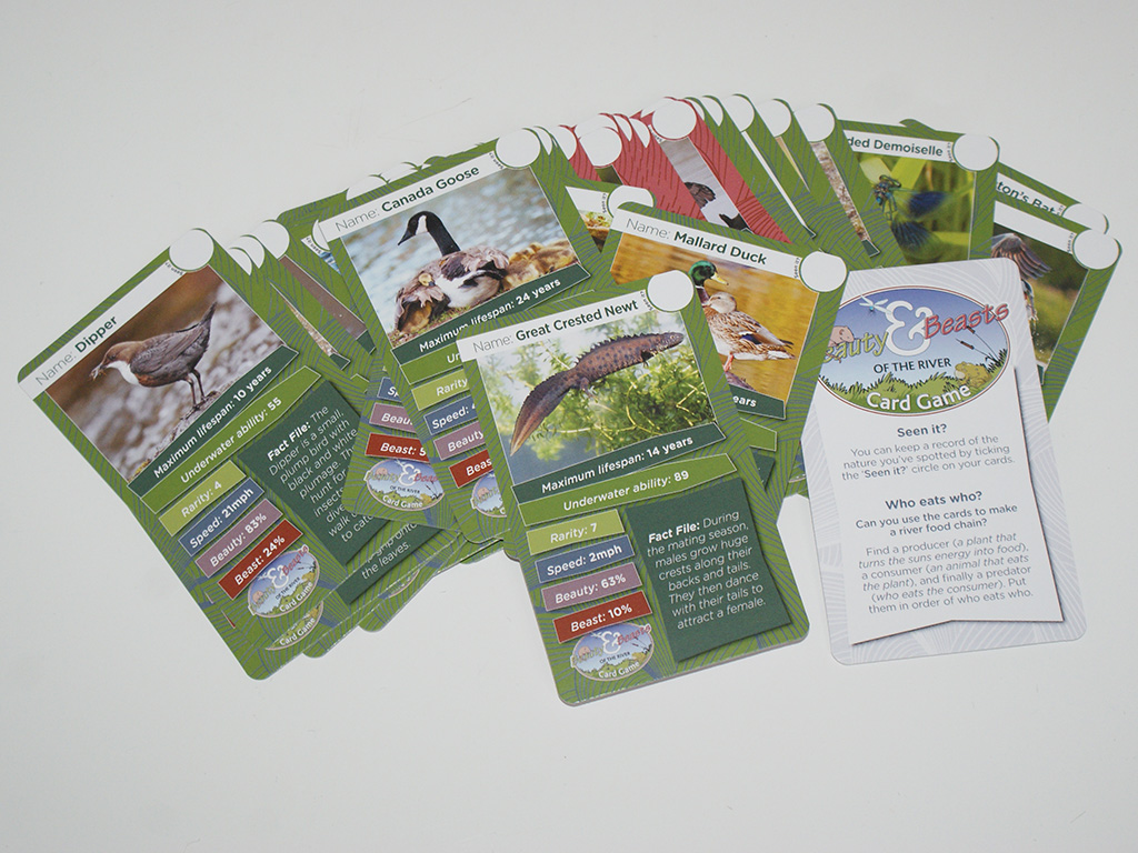 """Graphic design and production of """"Beauty & Beasts of the river"""" educational card game"""